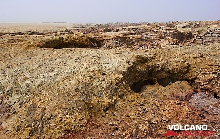 Another excursion takes us to Dallol volcano: the volcano is hidden beneath the thick salt, but domes the salt layers above it up to a broad flat hill. Erosion carves out canyons in the salt flanks. (Photo: Tom Pfeiffer)