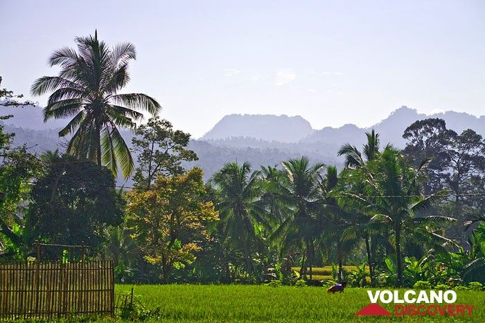 Javanese landscape around Carita (Photo: Tobias Schorr)