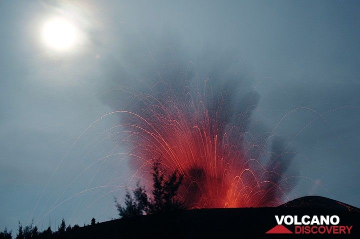 Eruption of Anak Kraktau with the moon-lit sky. Trees on the outer slope of the old crater of Anak Krakatau form a silhouette against the eruption. (Photo: Tom Pfeiffer)
