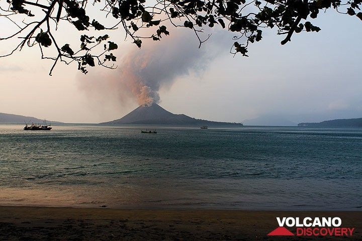 Ash emission from Anak Krakatau seen from Rakata during the day. (Photo: Tom Pfeiffer)