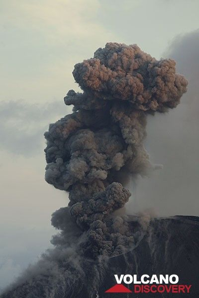 Eruption plume in the morning light. (c)