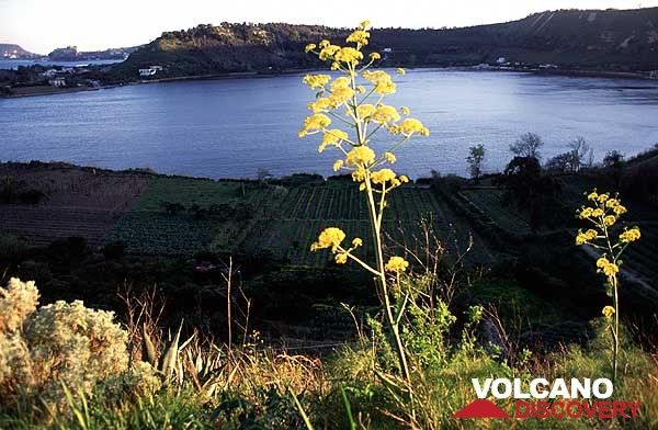 The Lago di Averna - a water-filled crater of the Campi Flegrei volcanic field near Naples. (c)