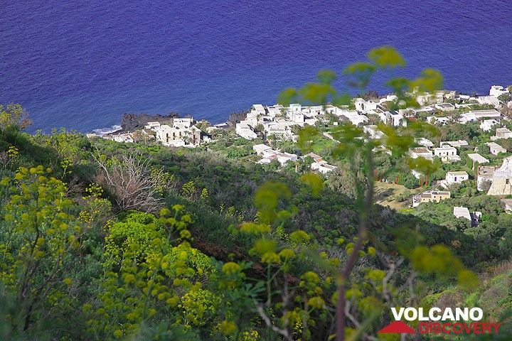 View onto the houses of Picit from the spring-time macchia on Stromboli.  (Photo: Tom Pfeiffer)