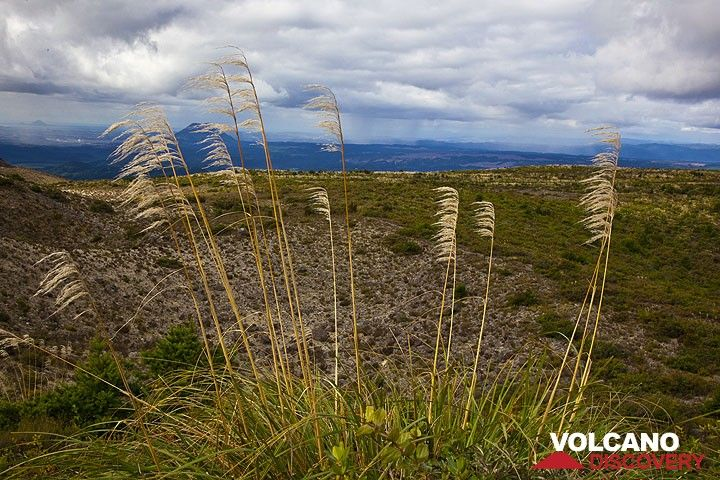 Panorama over the Taupo volcanic zone seen from the rim of Tarawera volcano (Photo: Tom Pfeiffer)