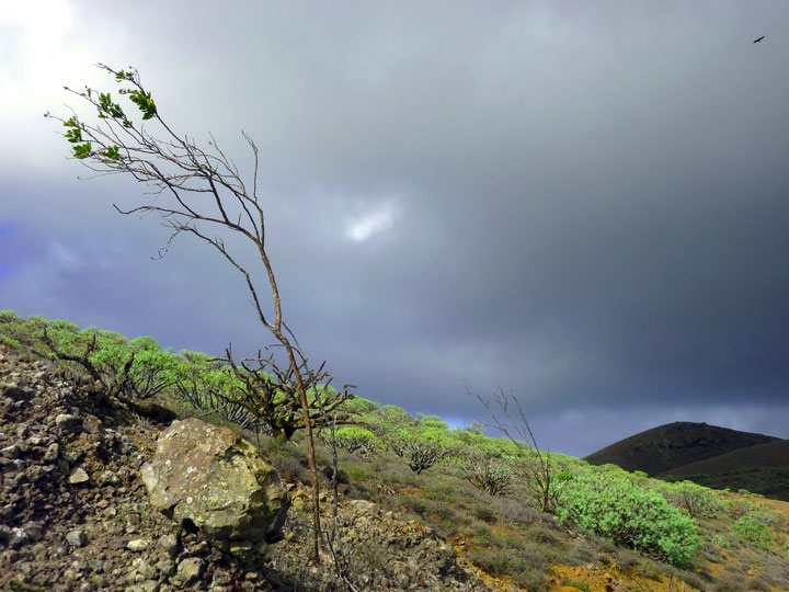 A storm arises on El Hierro, Canary islands. (Photo: Janka)