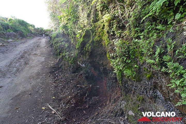 The way up to Yasur cut into wet ash deposits where warm steam escapes from the ground. (Photo: Tom Pfeiffer)