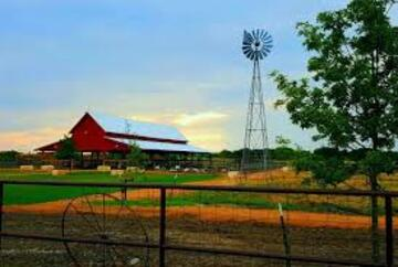 heres my farm its the best in town not to brag lmao (public domain)