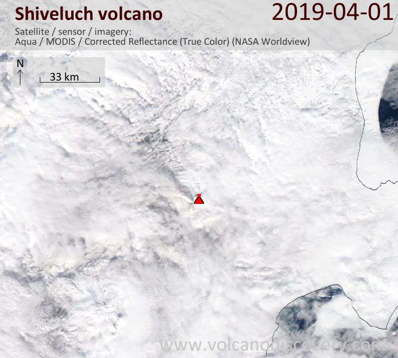 Satellite image of Shiveluch volcano on  1 Apr 2019